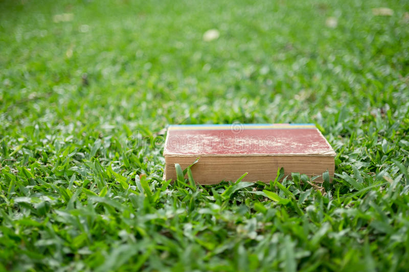 Education concept - Books lying on grass stock images