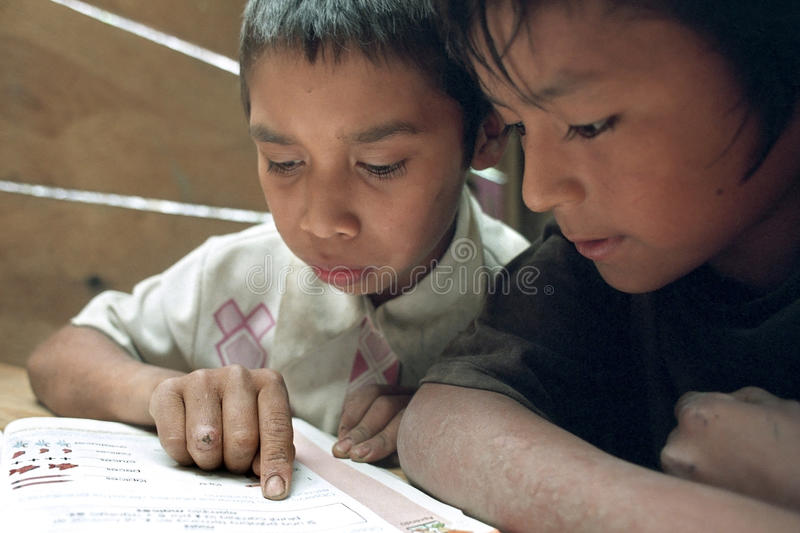 Education for indigenous Guatemalan boys, reading. Guatemala, department Alto Verapaz, village Parachoch: in the mountains around Coban group portrait of stock photos