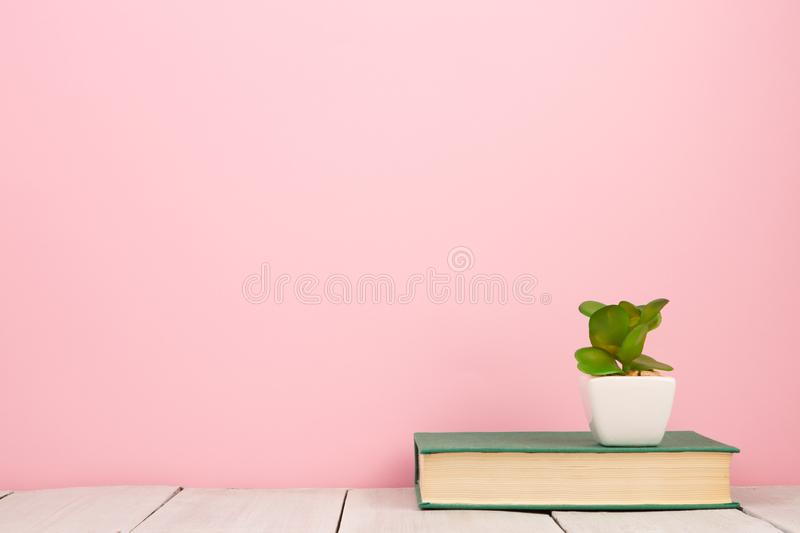 education and reading concept - book on wooden table, color background royalty free stock images