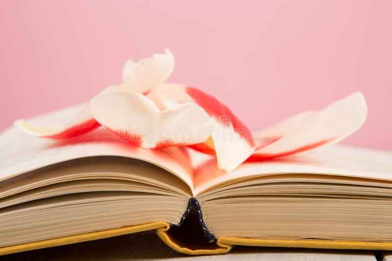 education and reading concept - open book with flower leafs royalty free stock photos