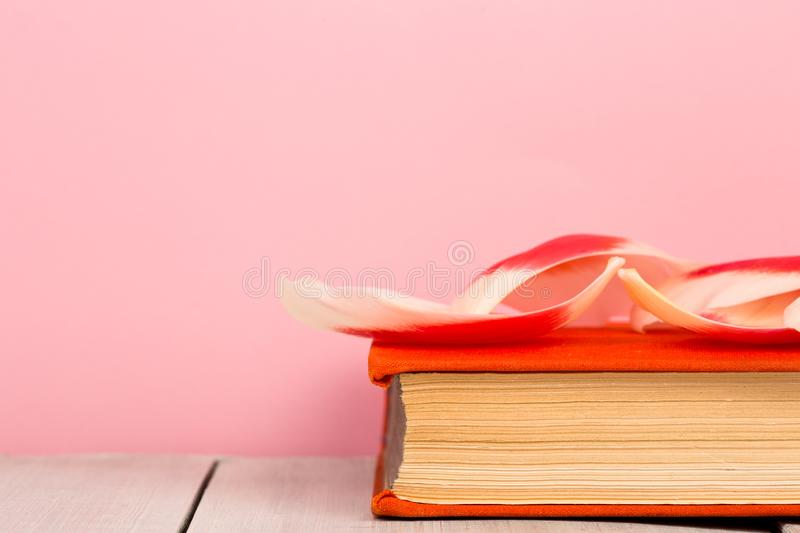 education and reading concept - open book with flower leafs royalty free stock images