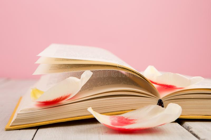 education and reading concept - open book with flower leafs stock image