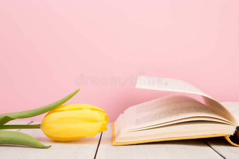 education and reading concept - open book with flower leafs stock photos