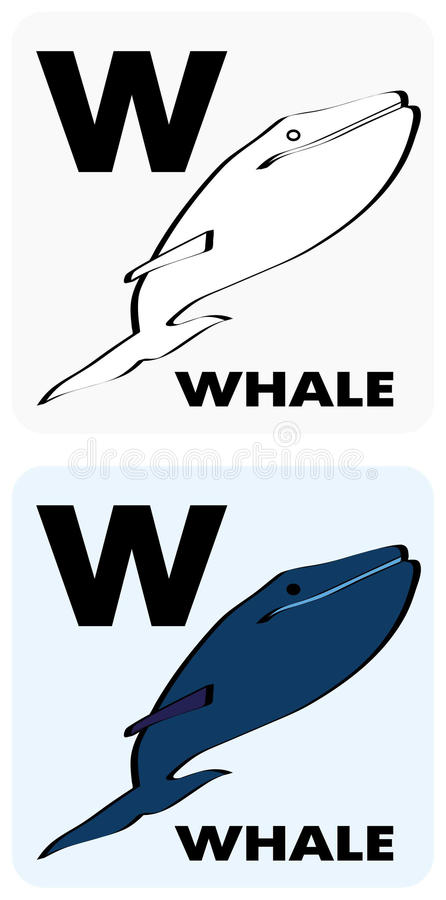 Educational Flashcard W Stock Images