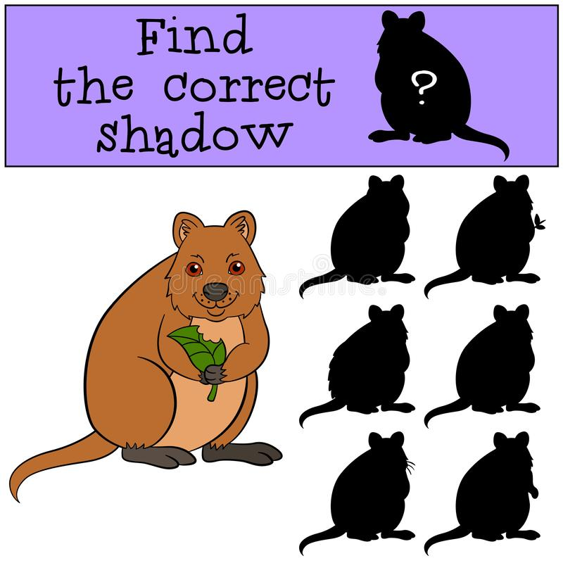 Educational game: Find the correct shadow. Little cute quokka. Holds the lear in the hands vector illustration
