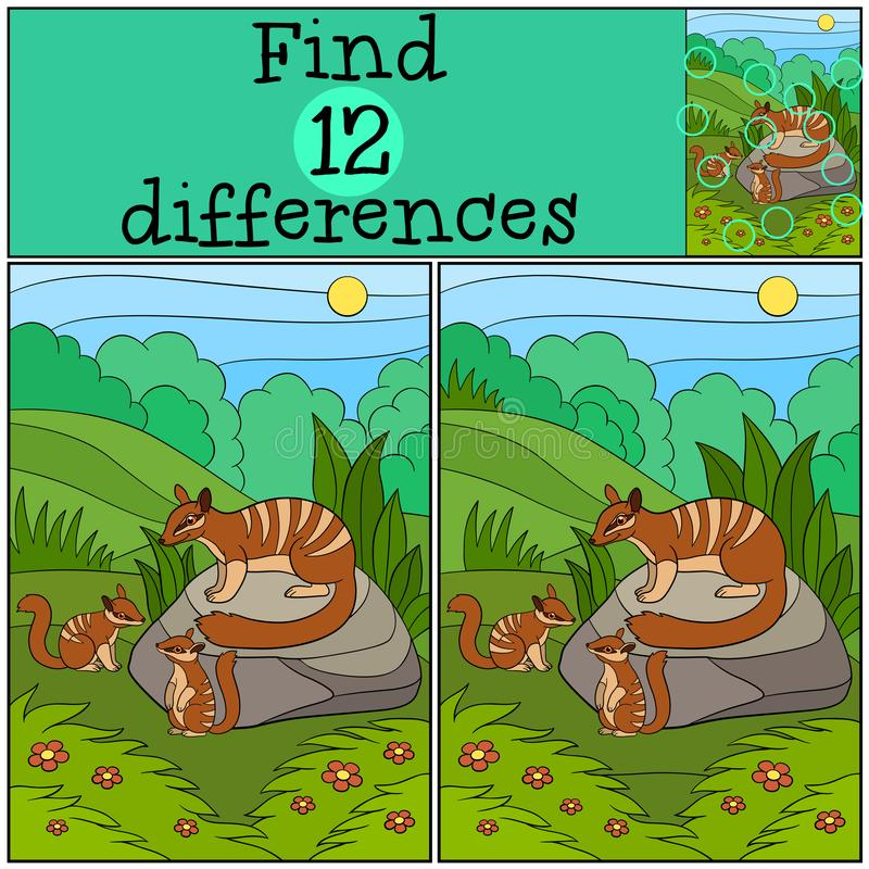 Educational game: Find differences. Mother numbat with her babies. Educational game: Find differences. Mother numbat with her little cute babies stock illustration