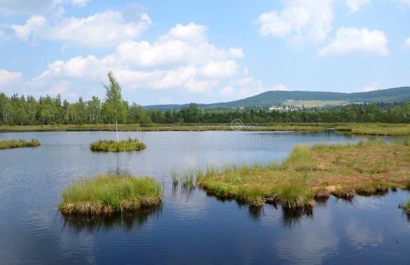 Educational trail Chalupska slat. In the Sumava National Park, Czech republic royalty free stock photos