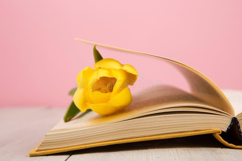 edukaci i czytania pojęcie - otwiera książkę z kwiatów liśćmi fotografia stock
