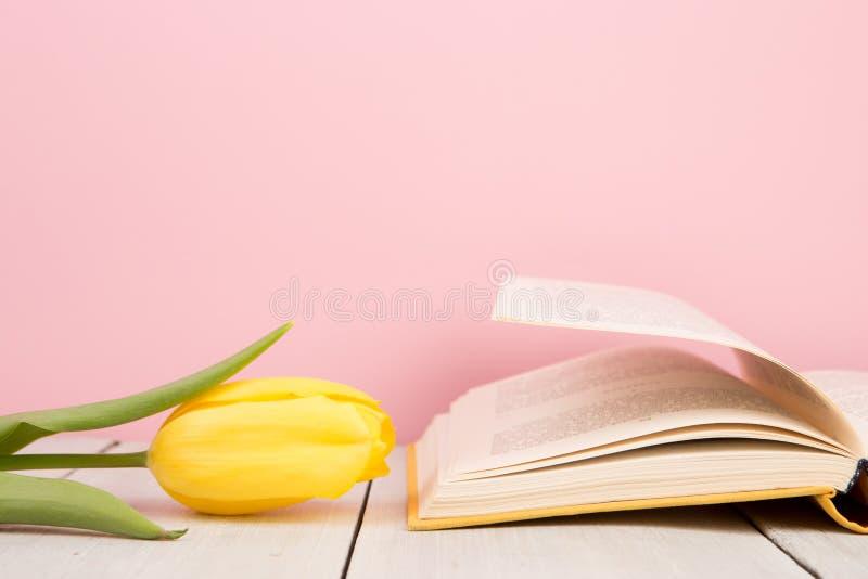 edukaci i czytania poj?cie - otwiera ksi??k? z kwiat?w li??mi zdjęcia stock