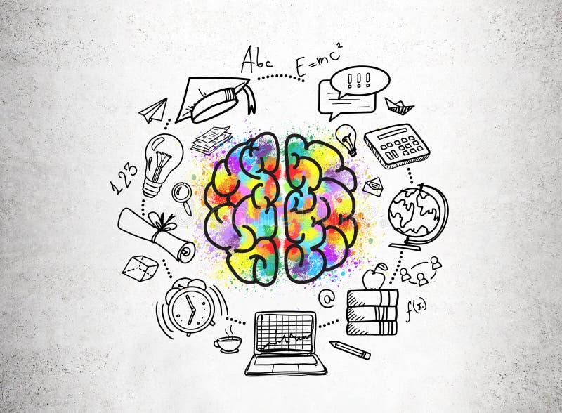 Edukacj ikony i kolorowy móżdżkowy nakreślenie ilustracja wektor