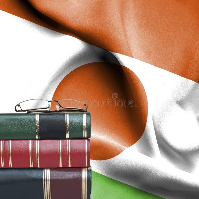 Edukacji pojęcie - sterta książki i czytelniczy szkła przeciw fladze państowowej Niger zdjęcie stock