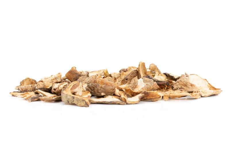 Edulis di boletus marrone asciutto del fungo isolato su bianco immagine stock