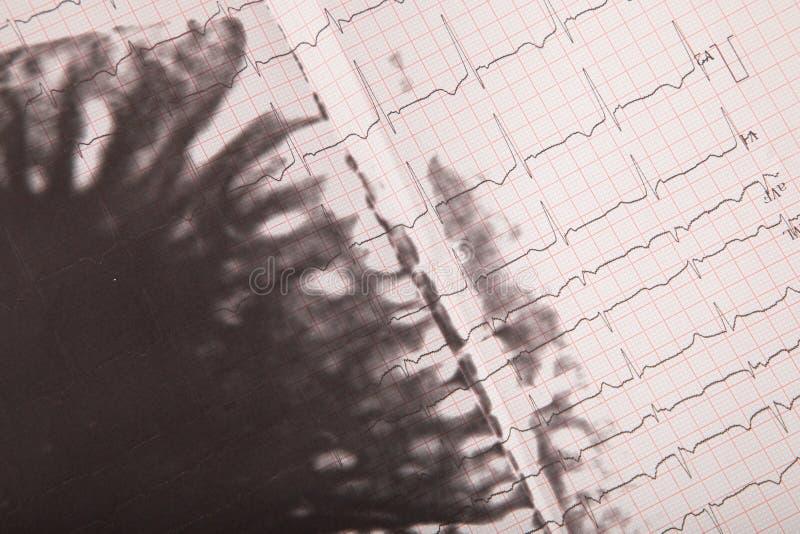 Медицинские истории стоковое фото