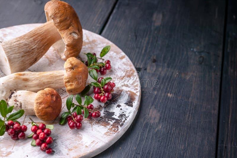 Eekhoorntjesbroden en lingonberries op een houten scherpe raad op een donkere houten achtergrond Close-up royalty-vrije stock foto