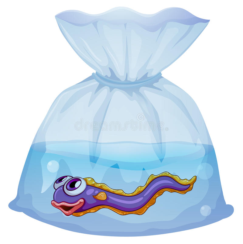 An eel fish inside the plastic. Illustration of an eel fish inside the plastic on a white background royalty free illustration