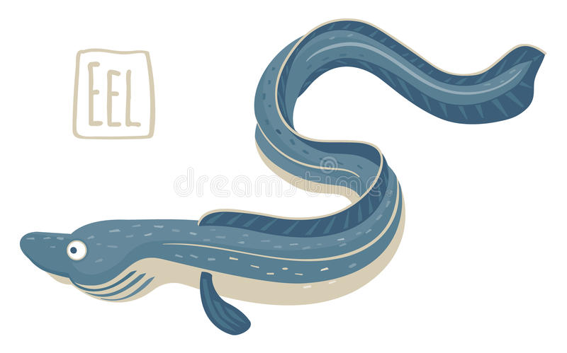 Eel, vector illustration. Vector illustration of a eel in cartoon style vector illustration