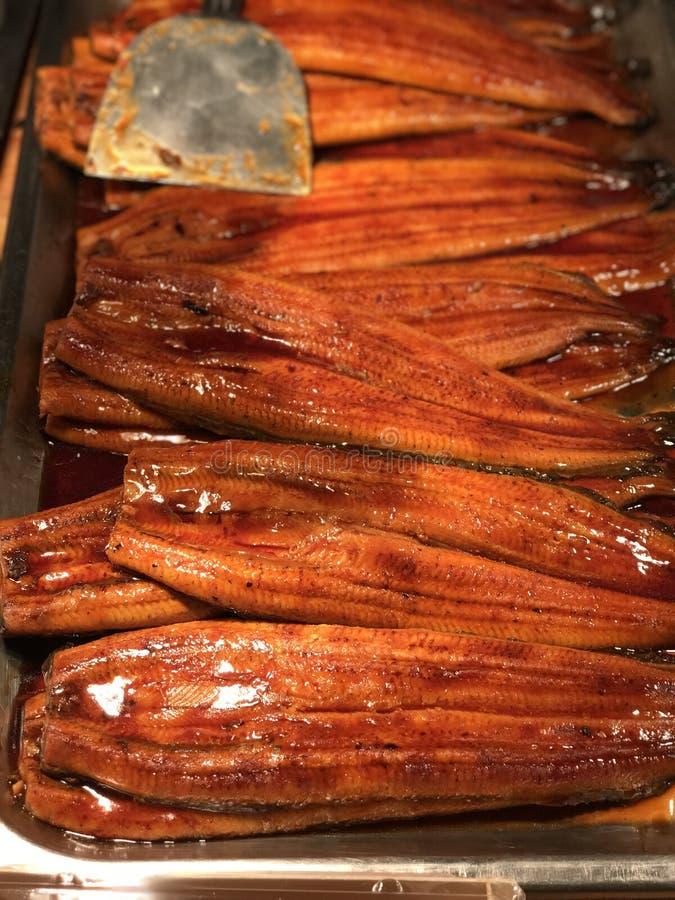 Eels fish. Closeup eels fish with sauce stock photography