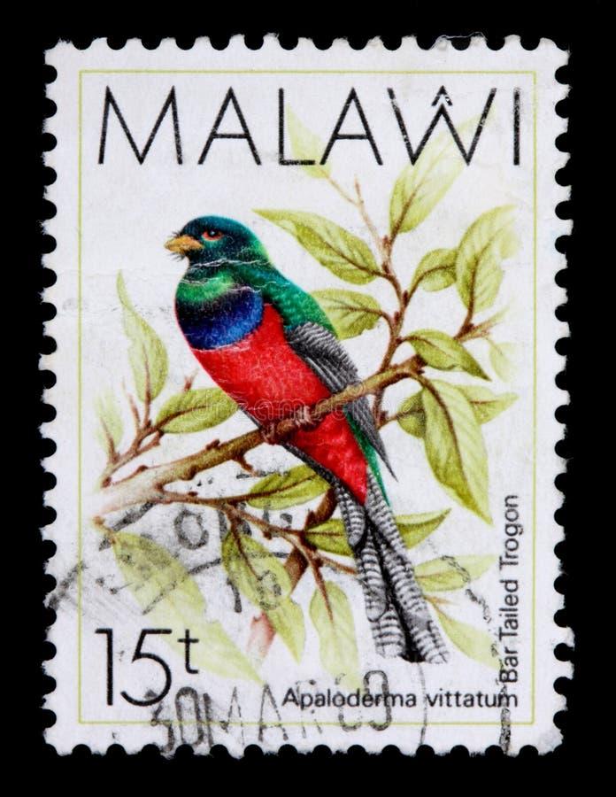 Een 15 tambalazegel die in Malawi wordt afgedrukt toont stock foto's