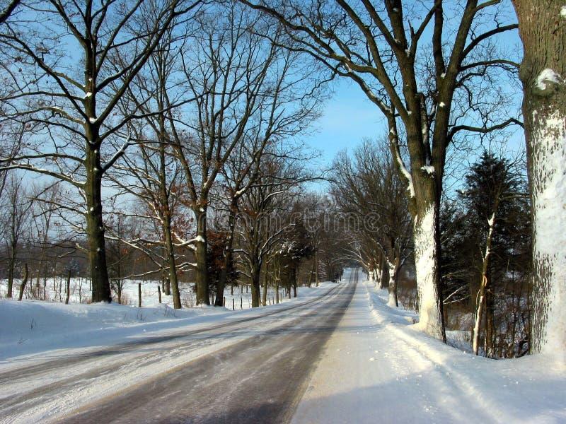Een Aandrijving Van De Winter Stock Fotografie