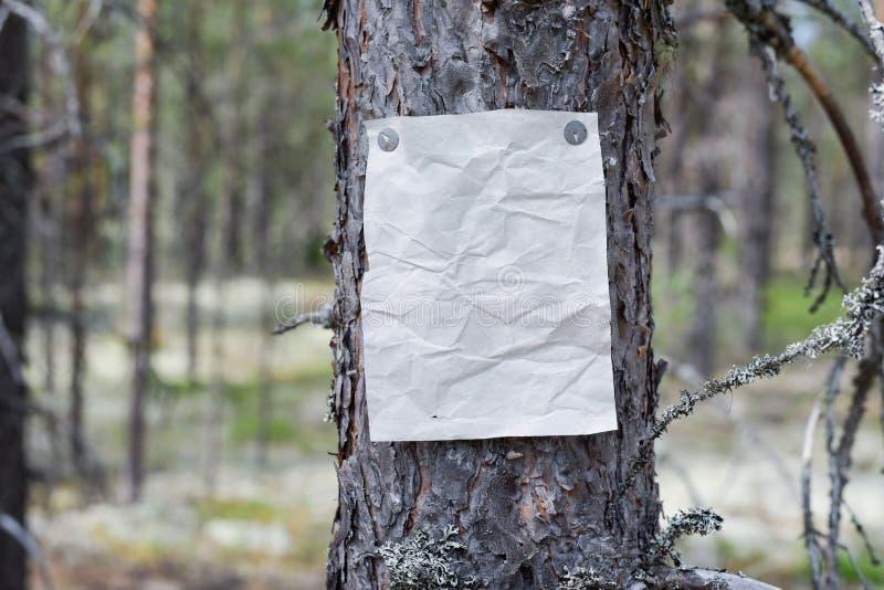 Een aankondiging, een brief, een bericht op een boom in het bos royalty-vrije stock afbeeldingen