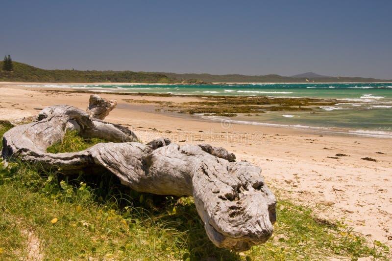 Een aantrekkelijke strandscène stock afbeelding