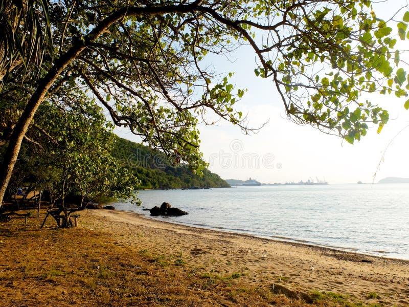 Een aardig strand stock afbeelding