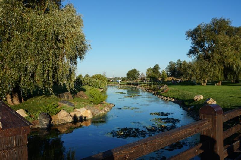 Een aardige kleine rivier met steenbanken stock fotografie
