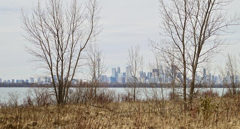 Een aardige recente de winterscène van de haven van Toronto stock foto