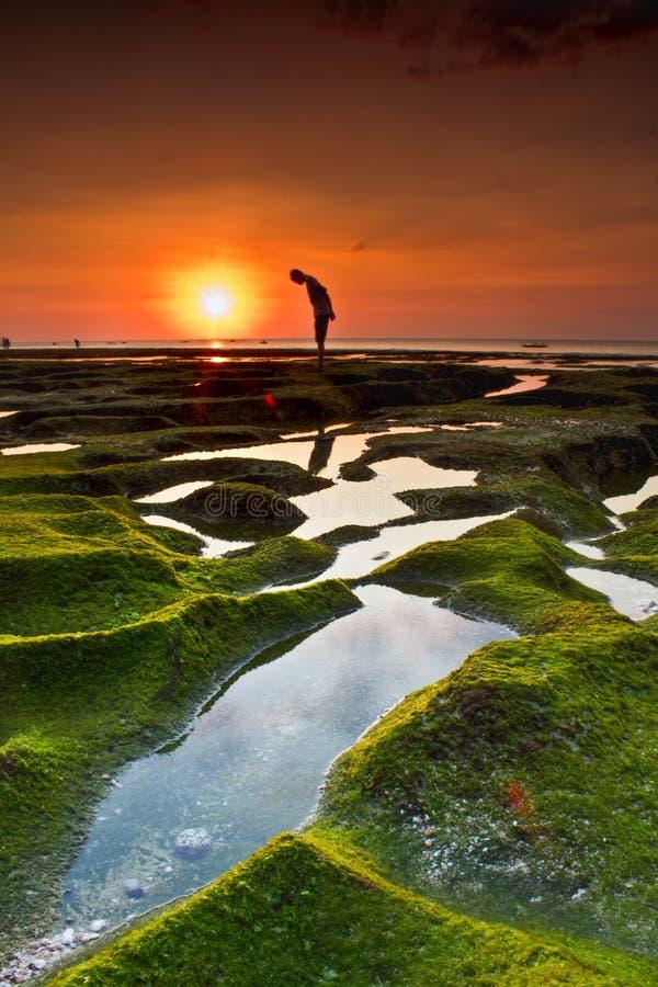 Een adembenemend en mooi natuurlijk landschap van de zonsondergang, de hemel is oranje met een voorgrond van het silhouet en het  stock afbeelding