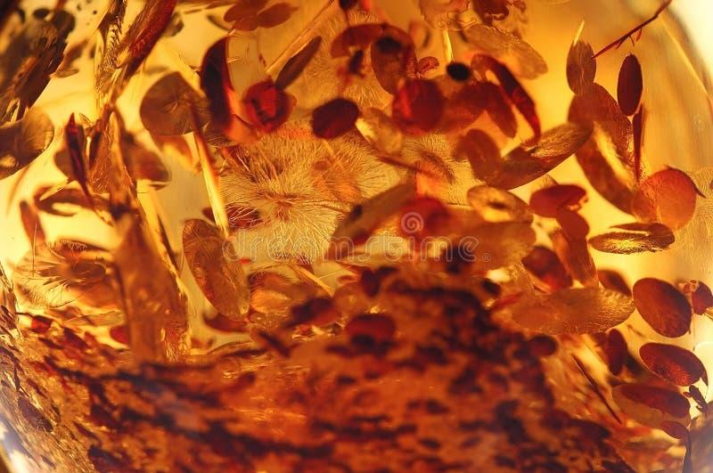 Een ambersteenclose-up royalty-vrije stock afbeeldingen
