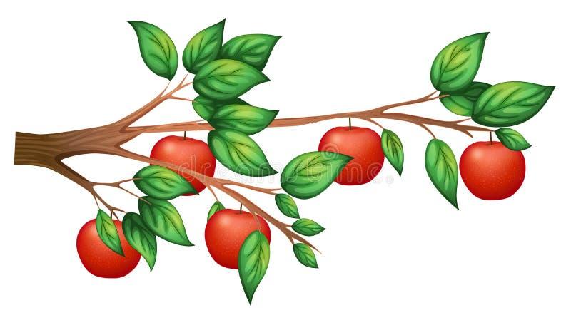 Een appelboom stock illustratie