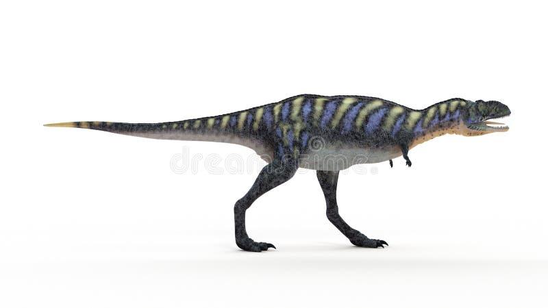 Een aucasaurus royalty-vrije illustratie