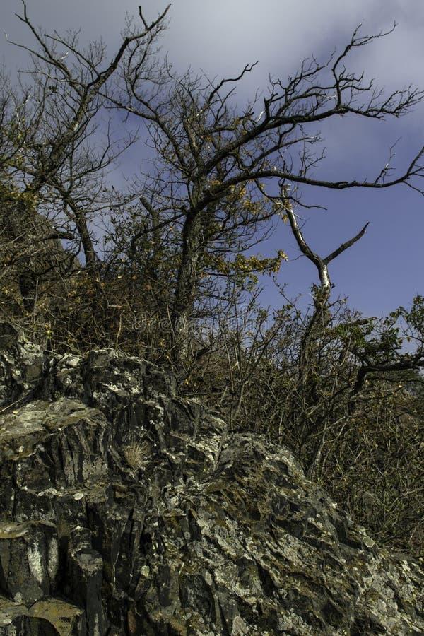 Een basaltrots op de bovenkant van een heuvel royalty-vrije stock foto