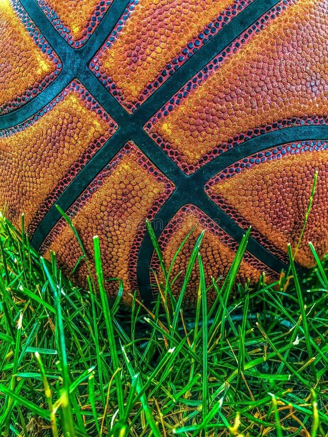 Een basketbal in het gras royalty-vrije stock foto's