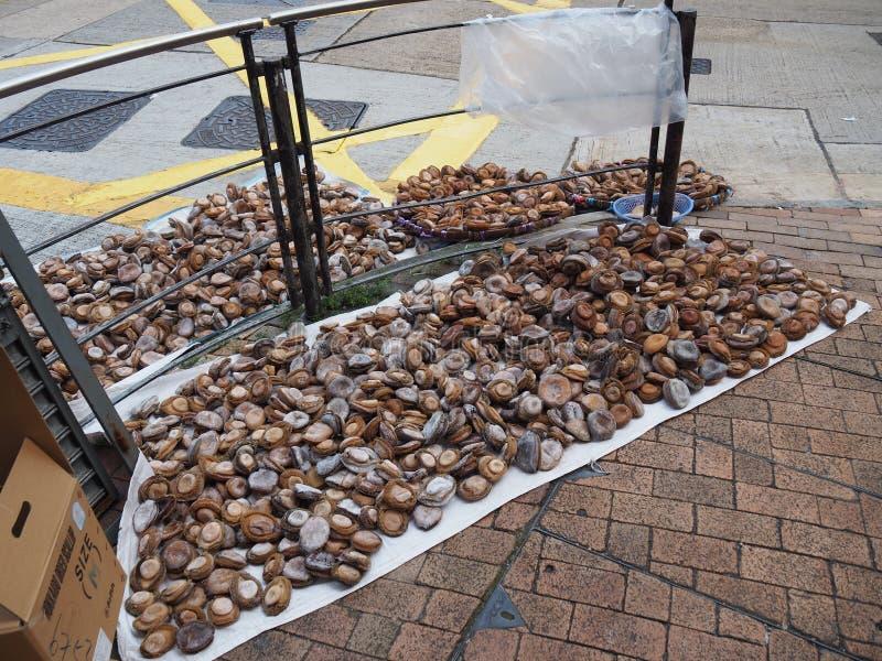 Een beeld van droge abalone die voor verkoop dichtbij Des Voeux Road in Hong Kong wordt aangeboden royalty-vrije stock afbeeldingen