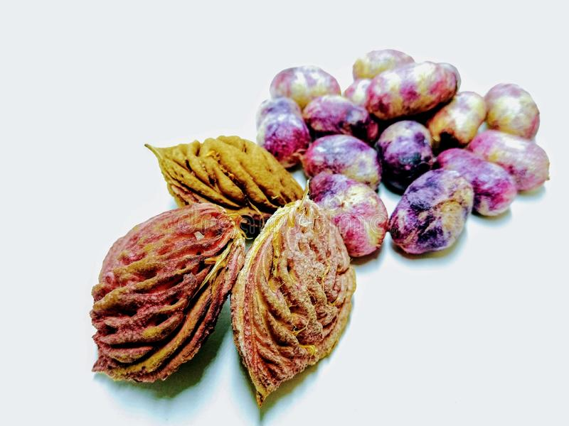 Een beeld van gemengde zaden op witte achtergrond, stock fotografie