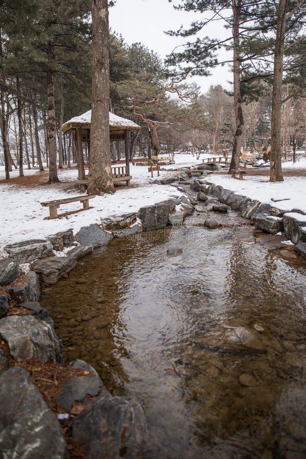 Een beeld van een kleine stroom tijdens de winter stock foto