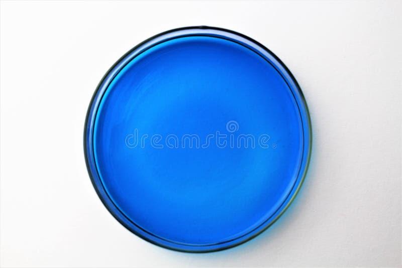 Een Beeld van een petrischaal - Petri-plaat, de schotel van de celcultuur stock afbeeldingen