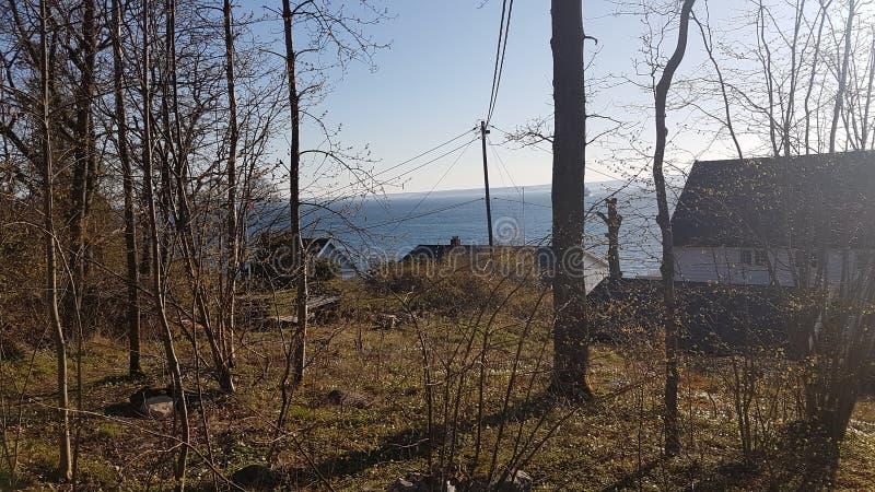 Een beeld van winterlandscape van Mos stock afbeelding
