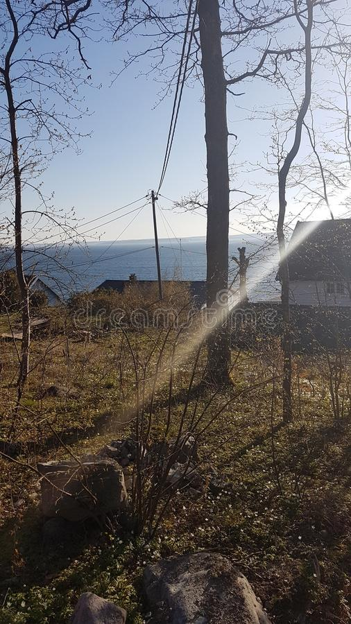 Een beeld van winterlandscape van Mos stock foto's