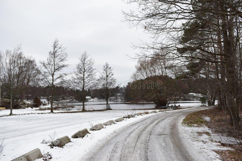 Een beeld van winterlandscape van Mos stock afbeeldingen