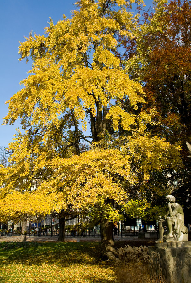 Een beeldhouwwerk onder herfst-gekleurde bomen stock afbeelding