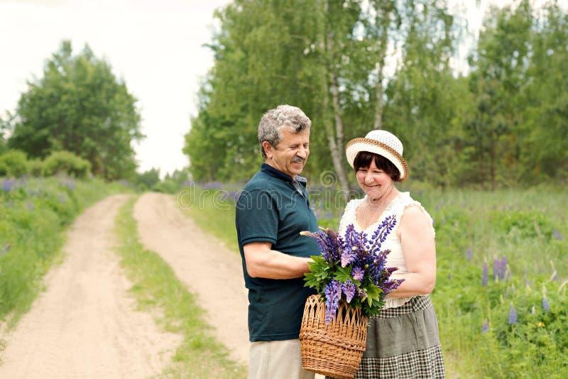 Een bejaard paar loopt door het bos en een man geeft een vrouw een geweven mand met een boeket van bloemen van purpere lupines stock foto's