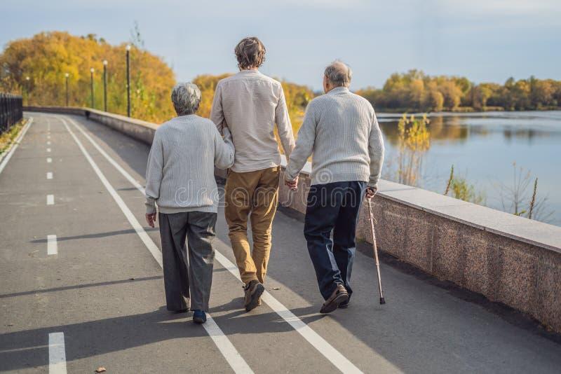 Een bejaard paar loopt in het park met een mannelijke hulp of volwassen kleinzoon Gevend voor de bejaarden, het aanmelden zich stock afbeelding