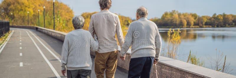 Een bejaard paar loopt in het park met een mannelijke hulp of volwassen kleinzoon Gevend voor de bejaarden, die BANNER aanmelden  stock foto