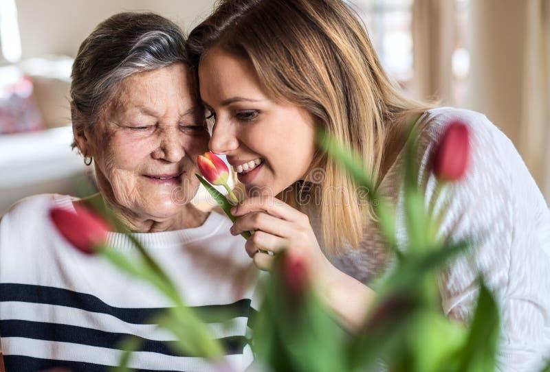 Een bejaarde grootmoeder met een volwassen kleindochter thuis, het ruiken bloeit royalty-vrije stock foto's