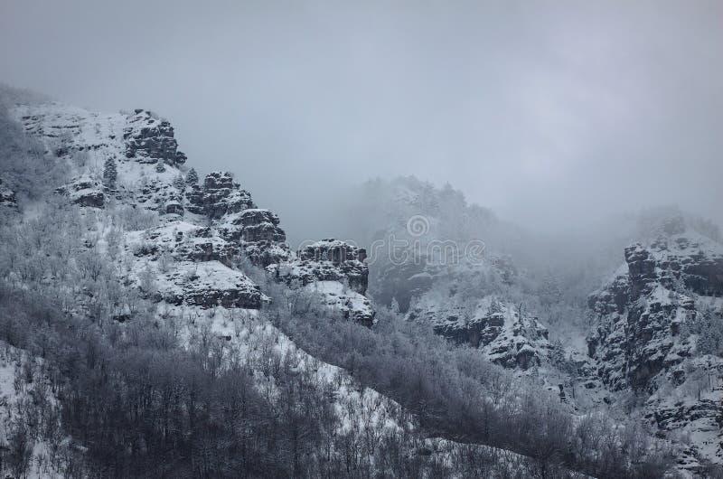 Een bergrots met sneeuw wordt behandeld die stock afbeeldingen