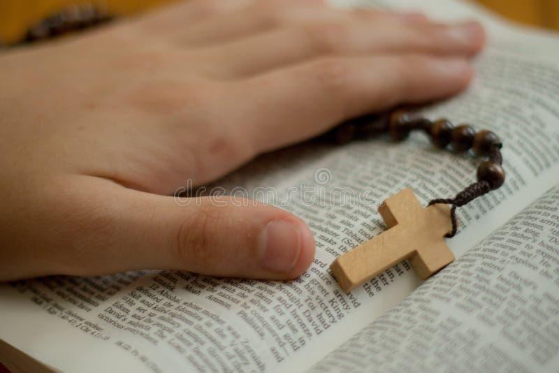 Een bijbel en een rozentuin stock foto