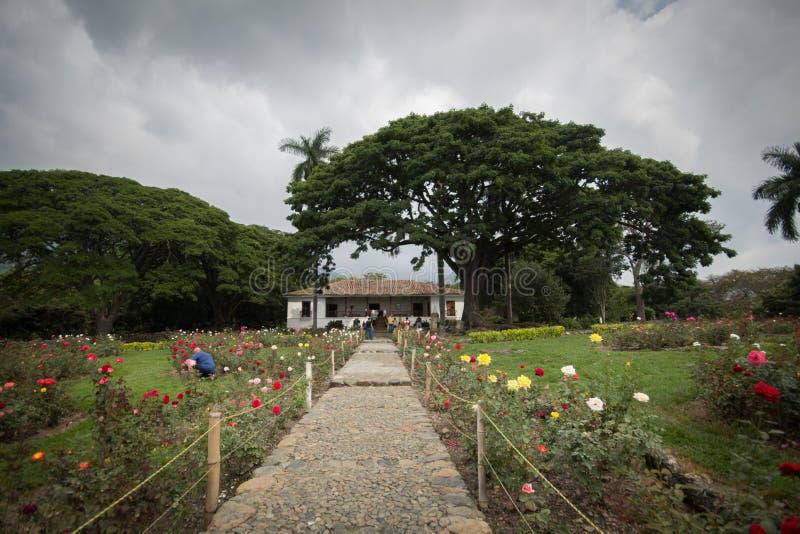 Een bloemgebied en een buitenhuis dichtbij Cali Colombia stock foto's