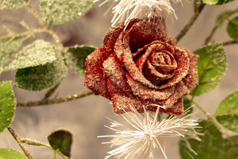 Een bloemstuk De spar vertakt zich, nette kegels en rode rozen in de sneeuw in de koude Het Stilleven van Kerstmis royalty-vrije stock fotografie